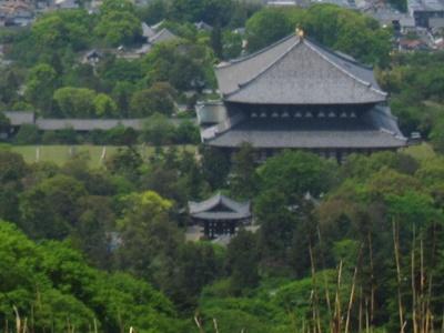 若草山からの東大寺
