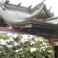 さらしなの里の古社 武水別神社~北信地方の随一の名神大社【1】