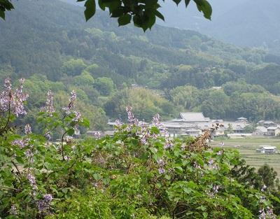 馬子・推古天皇が活躍した明日香村